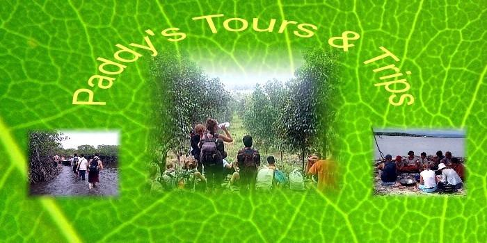 paddy tours in kohkong and the cardamommountains.